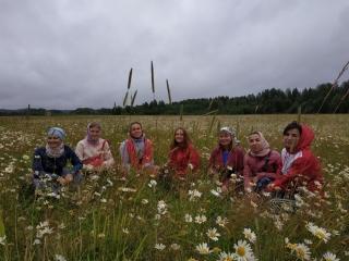 Летняя трудовая экспедиция молодежи прихода Иоанновского монастыря
